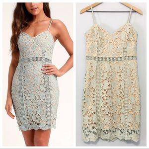 Lulus Giovanni sage green lace sheath dress M